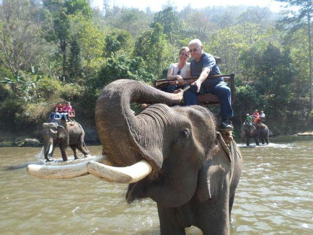 yo y me en elefante